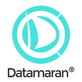 datamaran logo.png