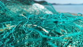 해양쓰레기로부터 그 누구도 자유로울 수 없다.