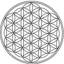 Flower of Life_edited_edited.jpg