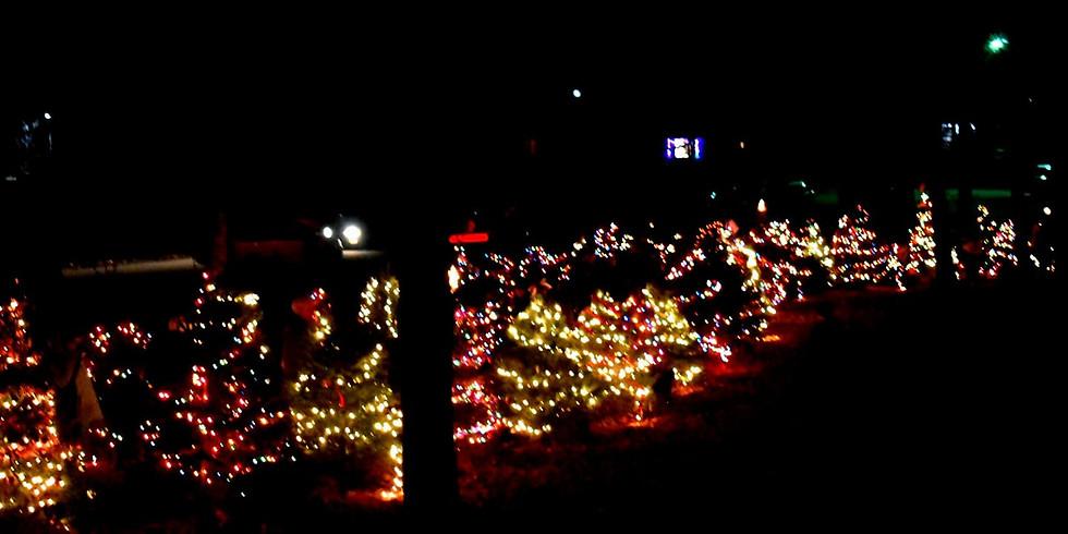 Chandler Park Tree Lighting & Fireworks