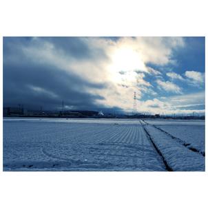 ★最強寒波到来★