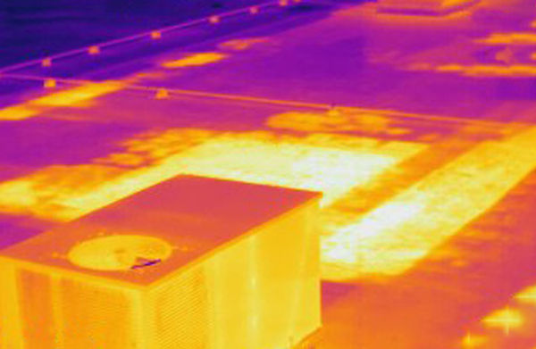 Infrared-sm.jpg