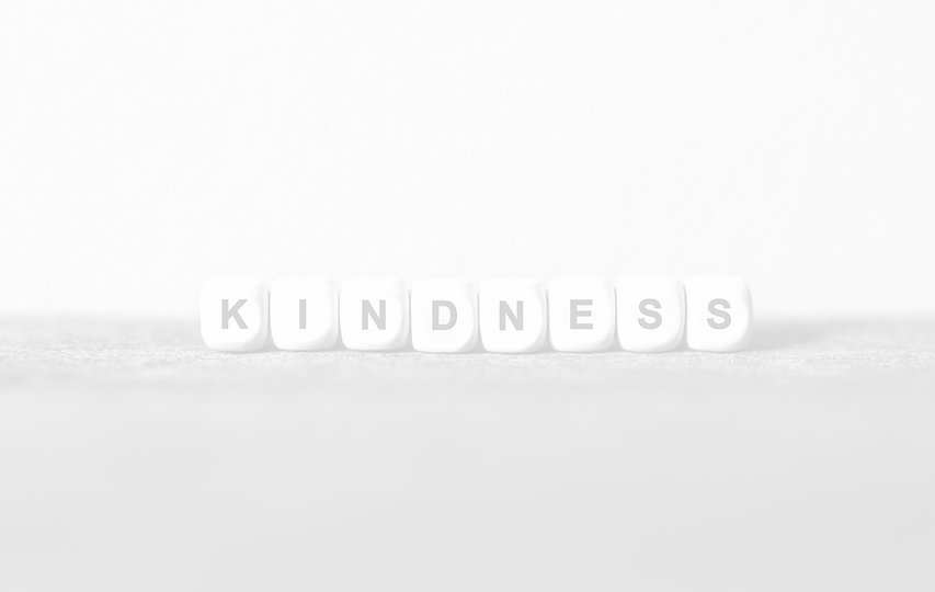 Word KINDNESS made with wood building blocks,stock image_edited_edited.jpg