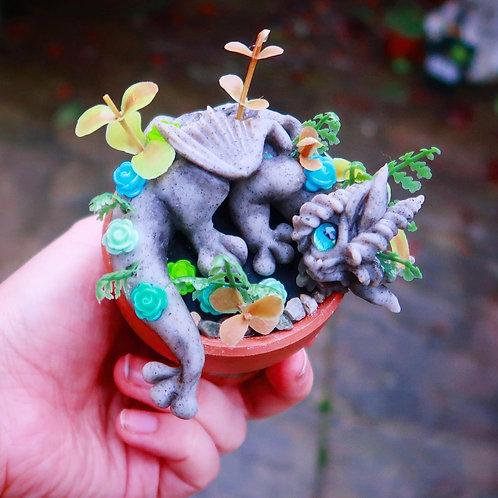 """Succulent Dragon """"Elena"""" Sculpture"""
