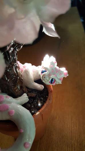 Caitlin's Cherry Blossom Dragon