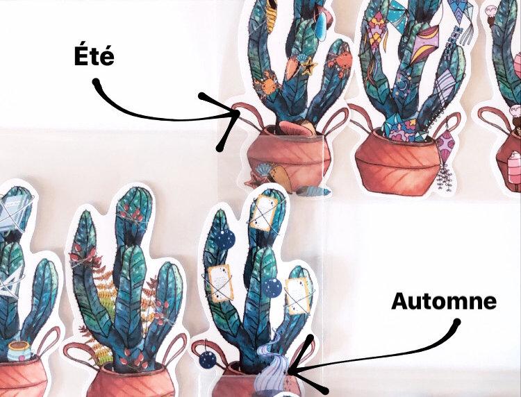 Pack de 3 cactus