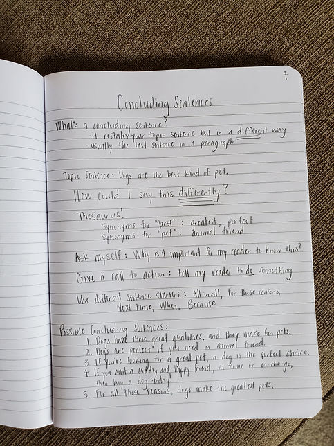 _Concluding Sentences Sample Page.jpg