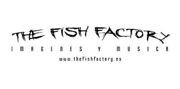 the-fish-factory.jpg