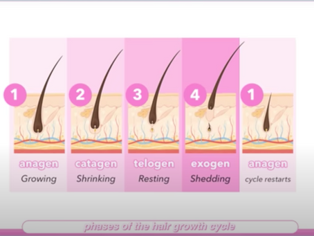 Hair Growing tips by Sarah Ingle | All about hair