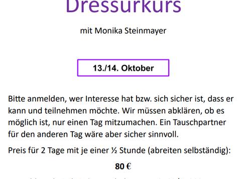 DRESSURKURS mit Monika Steinmayer