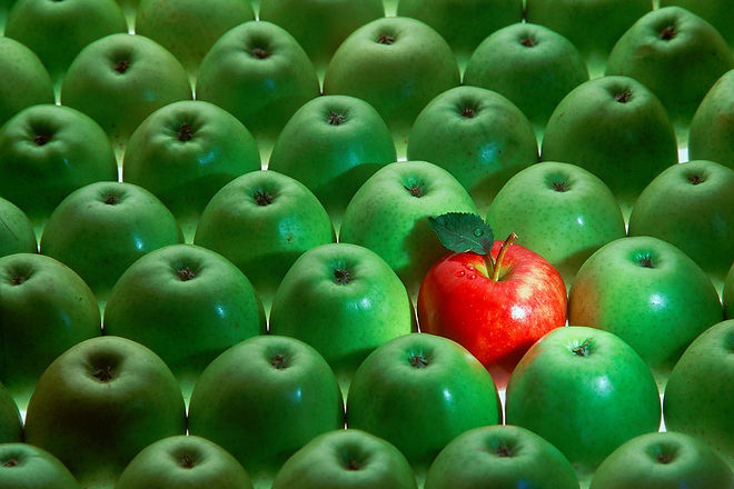 one-red-apple-among-many-green-apples-pi