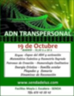 ADN TRANSPERSONAL 333 ___O.jpg