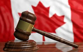 A Sum of 2020: Canadian Law Edition