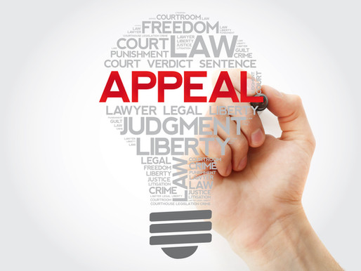 The Appeal Court's Opinion: Part 3 of the Family Law Appeal Series