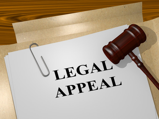 Part 1 on Appeals: Can I Appeal My Order?