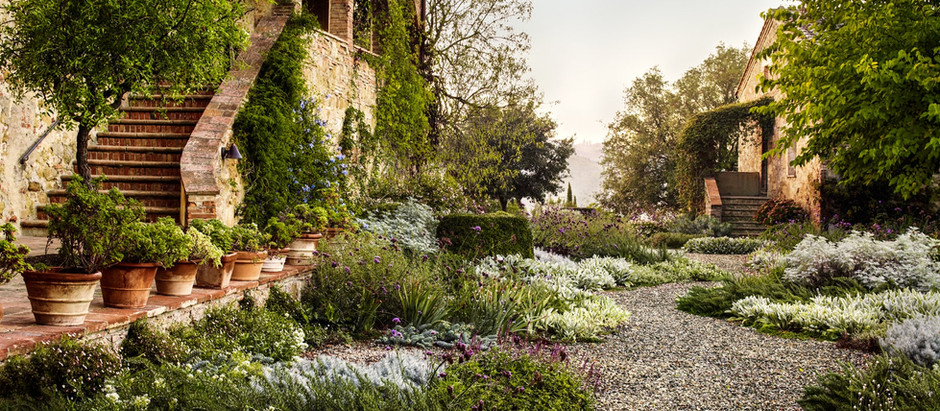 Garden Inspiration and Essentials