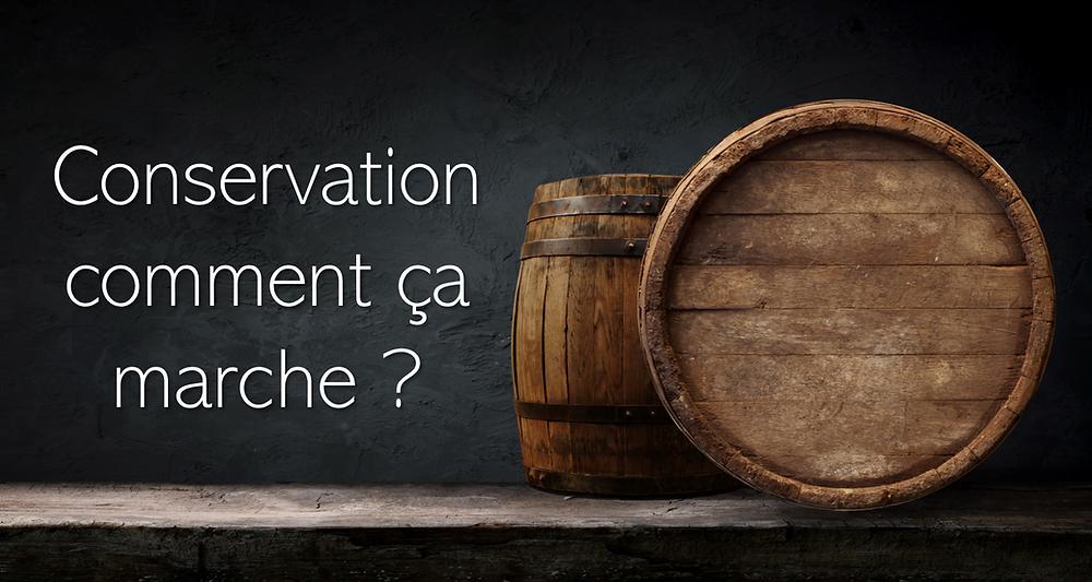 Comment bien conserver le vin ? Quelles sont les conditions idéales ? Voici les éléments clés proposés par Opus Vin
