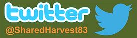 twitter banner for website.png