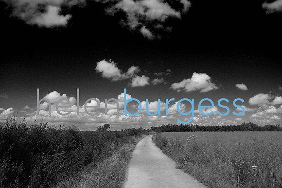 COTSWOLD LANE: WEB READY