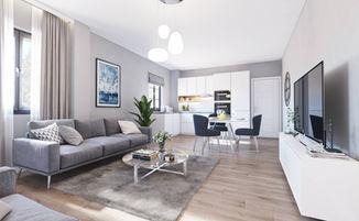 Braintree Living room Kitchen (1).jpg