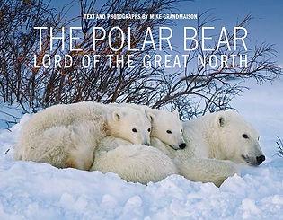 Polar Bears_cover_LR.jpg