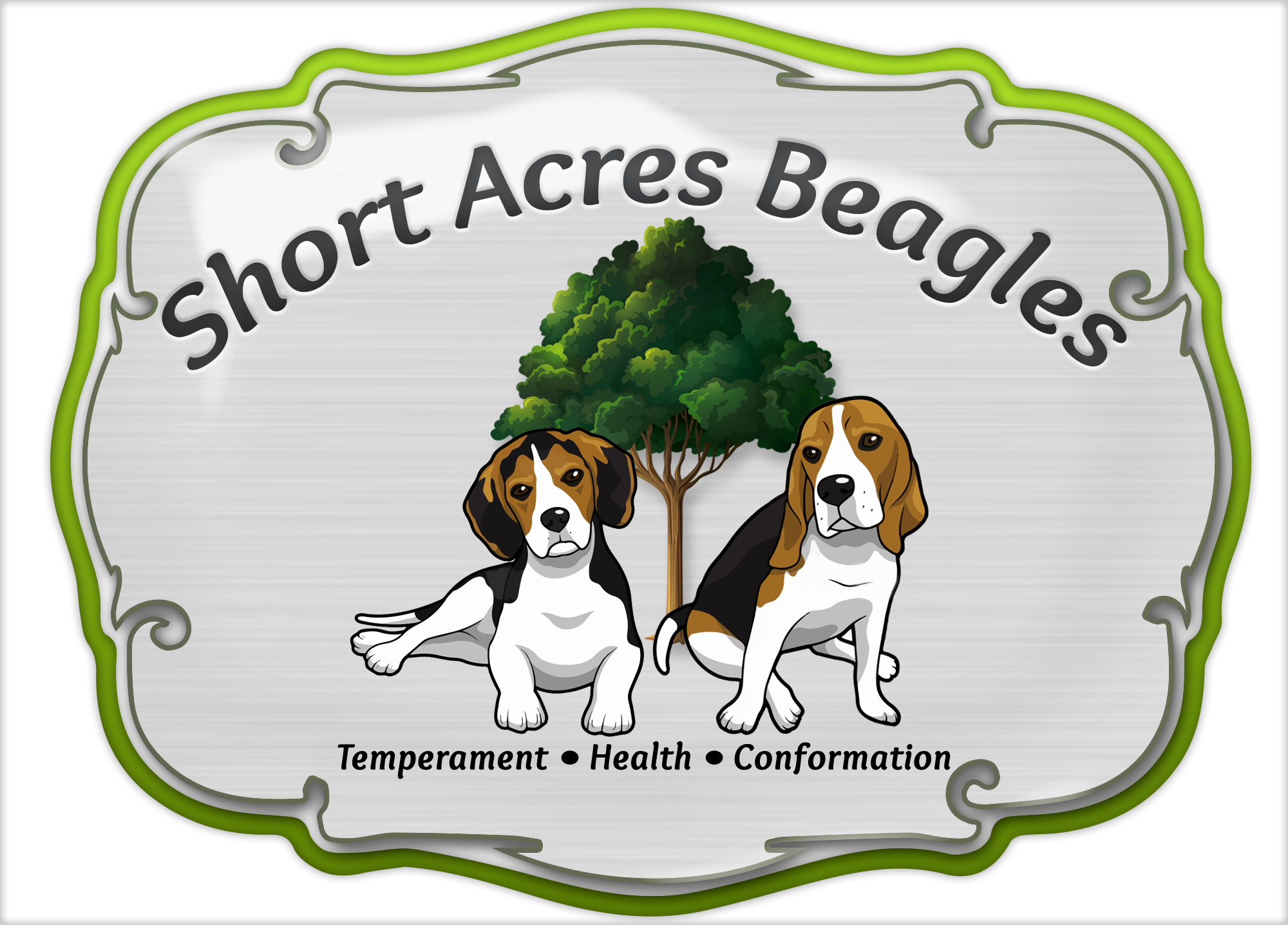 Short Acres Beagles Beagle Breeder In South Carolina