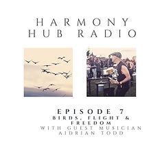 harmony for website (7).jpg