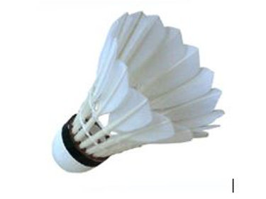 Feather Shuttlecocks, Tube of 12