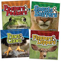Animal Adventure Board Books - Set of 4