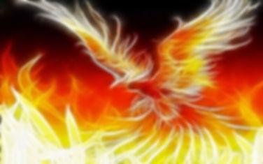 fugl-foenix.jpg
