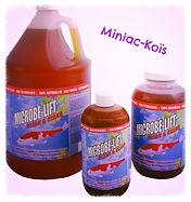 Produit bassin Microbelift -MiniacKoïs