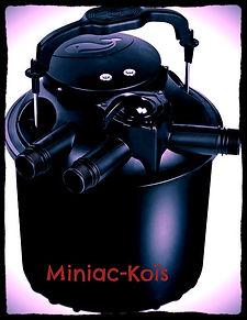 Miniac-Koïs le spécialiste du bassin de jardin au pay malouin.