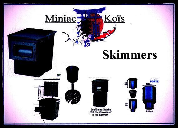 Skimmer de Bassin proposé par Miniac-Koïs
