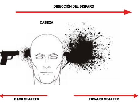 Importancia de las Manchas de Sangre de Retro Salpicadura en Lesiones (back spatter)
