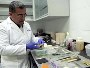 Entrevista con el Dr. Alejandro Hernández Cárdenas