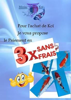 paiement 3x.png