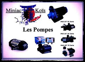 Miniac-Koïs Le Spécialiste du bassin de jardin en région Bretagne, vous Propose un large choix de pompes de bassin de haute qualité .