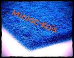 Miniac-Koïs le Spécialiste du Bassin de jardin en région bretagne