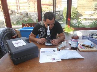 Conception et réalisation, suivi et entretien du bassin en région bretagne