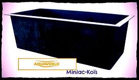 Miniac-Koïs Spécialiste du bassin de jardin en région Bretagne