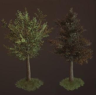 3D minor - Trees