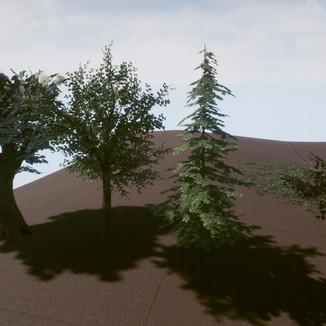 Week 6 - Additonal Trees