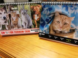 Einen der letzten Tierheimkalender sichern!