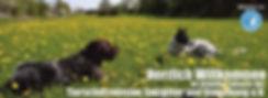 Titelbild_neu (Copy).jpg