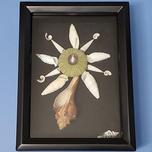 Shell Art | Sea Urchin Shell Flower | 5x7 | Rockville Maryland