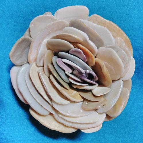 Shell Flower (1)