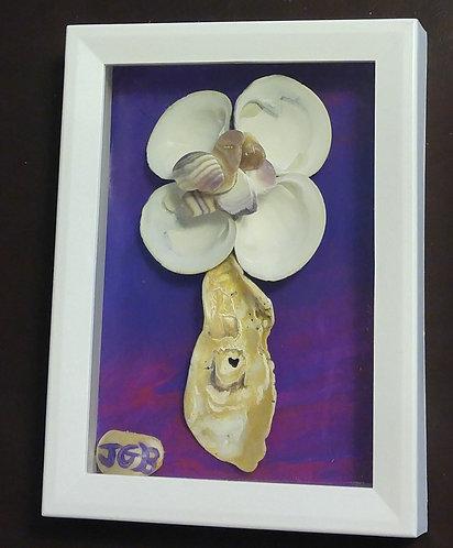Shell Flower   Seashell Wall Art   Shadow box 6 x 8 inches