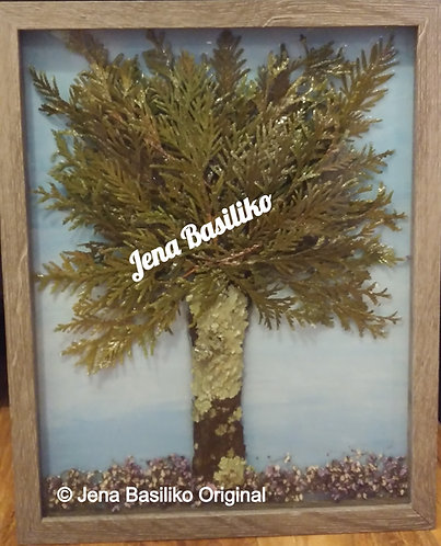 Earth Art | Sycamore Tree | 11x14 | Shadow Box | 3D