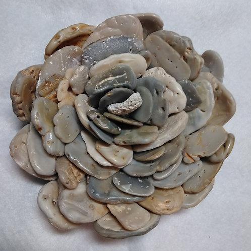 holey shell flower (1)