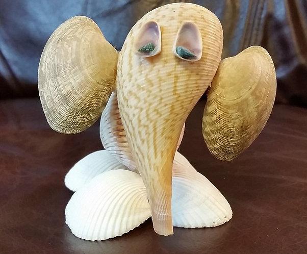 Seashell Elephant front view